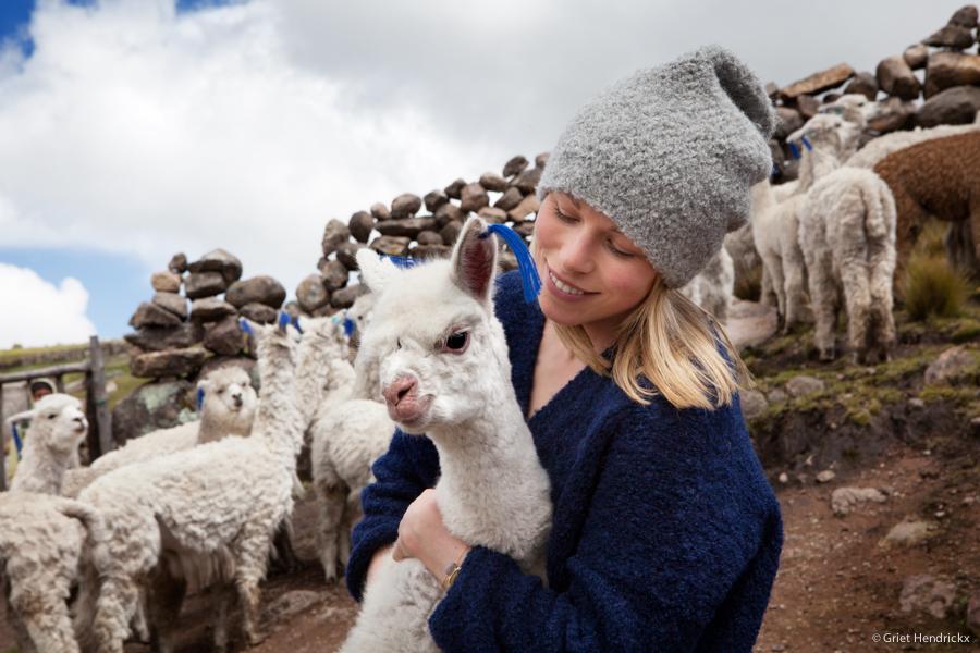At the alpaca farmers.