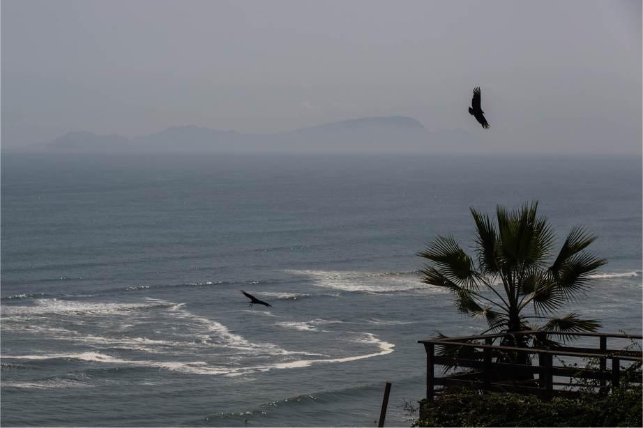 2016 LN Knits Peru_dag 1_Lima_Cevice BLOG10